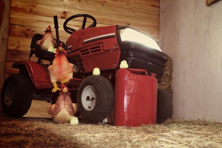 rebelion en la granja escape room rubikon